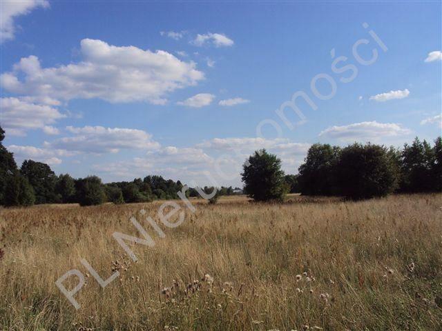 Działka rolna na sprzedaż Holendry Baranowskie  8300m2 Foto 3