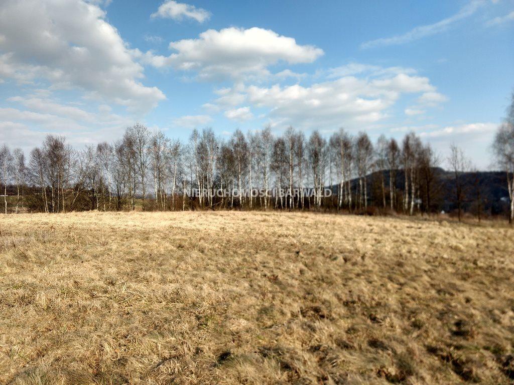 Działka rolna na sprzedaż Podolany  3177m2 Foto 7