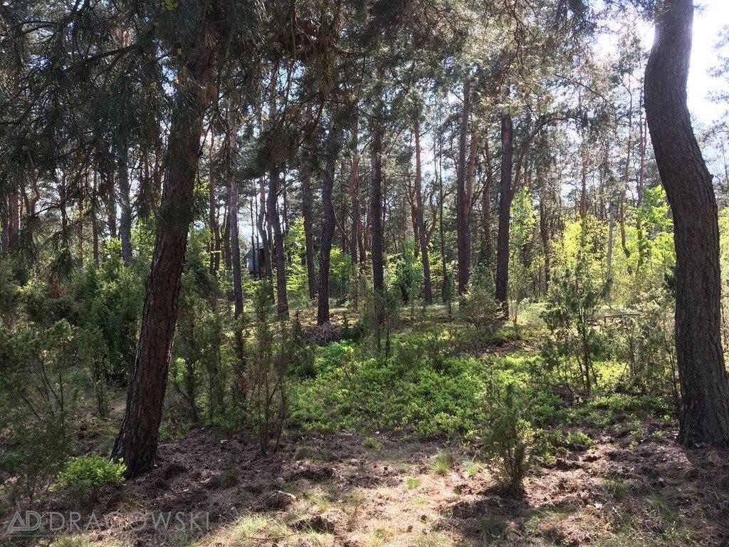Działka leśna z prawem budowy na sprzedaż Czarnów  2098m2 Foto 2