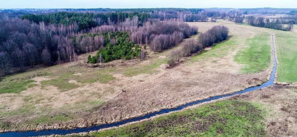Działka rolna na sprzedaż Janowicze  4300m2 Foto 3