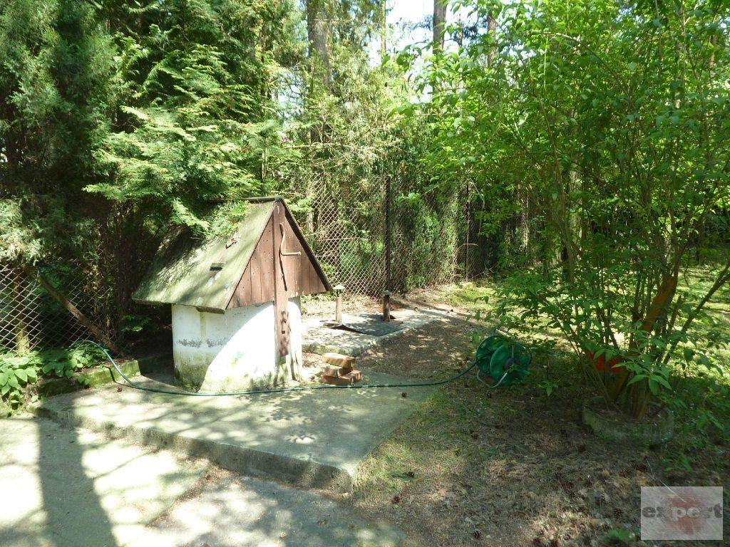 Działka rekreacyjna na sprzedaż Bechcice-Kolonia  963m2 Foto 7