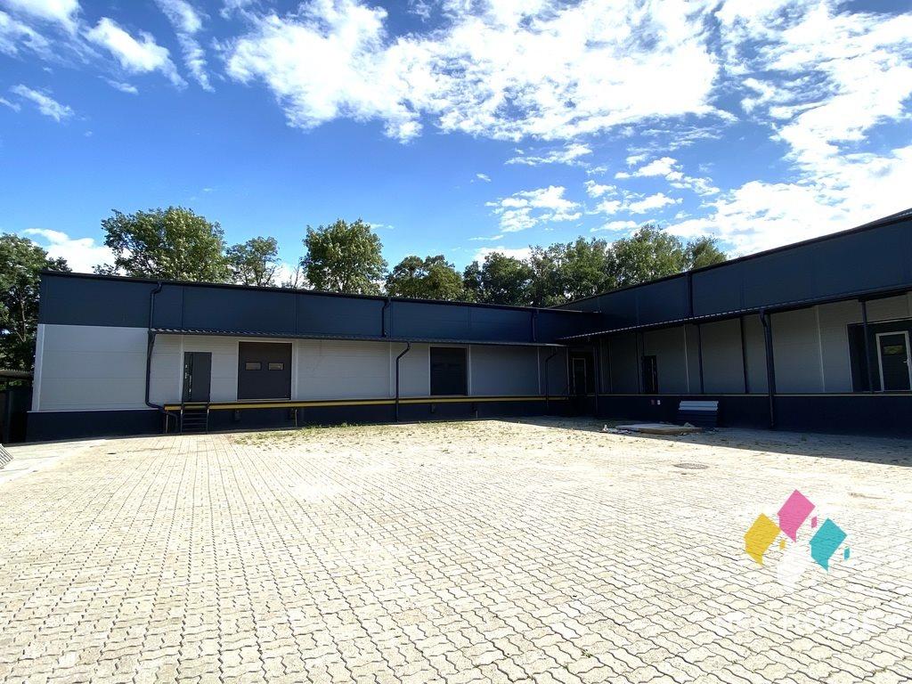 Lokal użytkowy na wynajem Olsztyn, Lubelska  1127m2 Foto 5