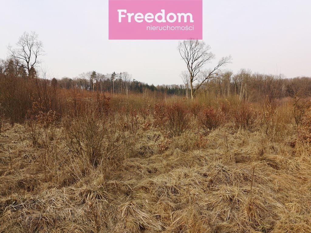 Działka leśna na sprzedaż Sobno  142300m2 Foto 9
