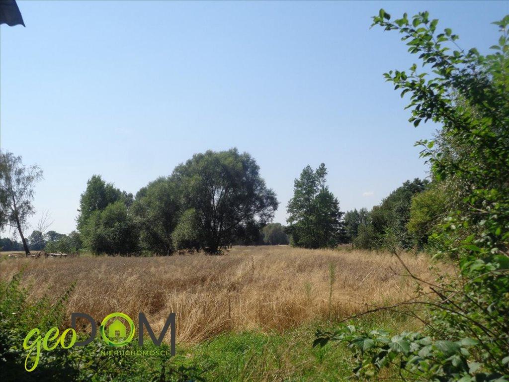 Działka rolna na sprzedaż Terespol  5927m2 Foto 5