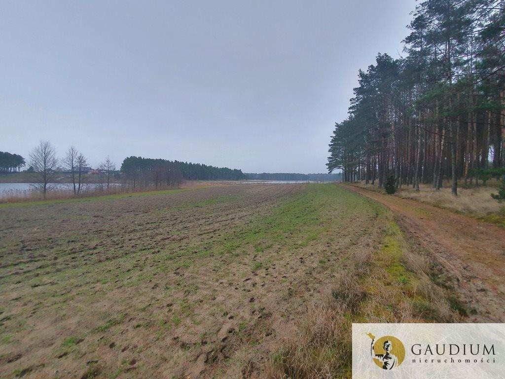 Działka leśna na sprzedaż Klocek  60000m2 Foto 12