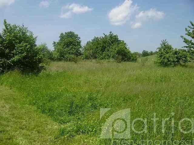 Działka rolna na sprzedaż Siadło Dolne  3000m2 Foto 4