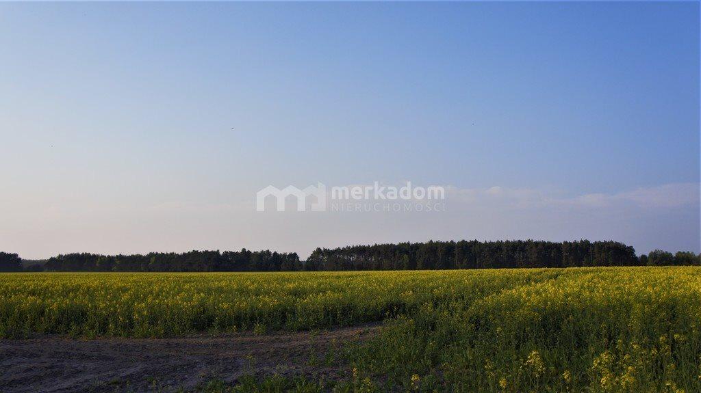 Działka rolna na sprzedaż Łosiniec  188901m2 Foto 1