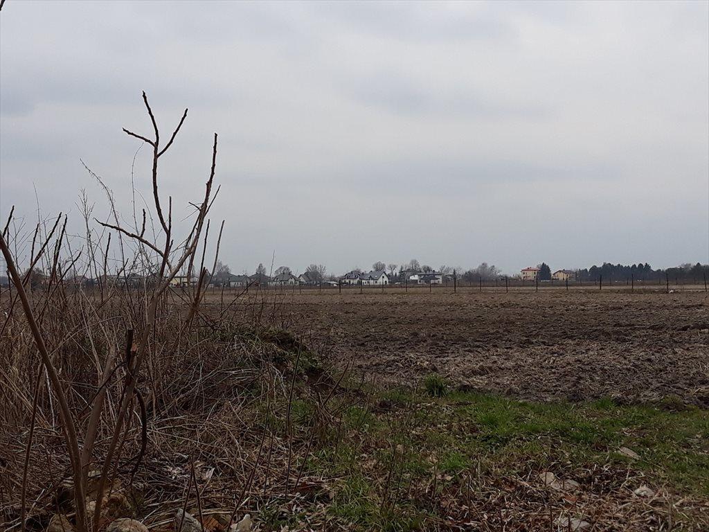 Działka rolna na sprzedaż Wierzbin  3000m2 Foto 9