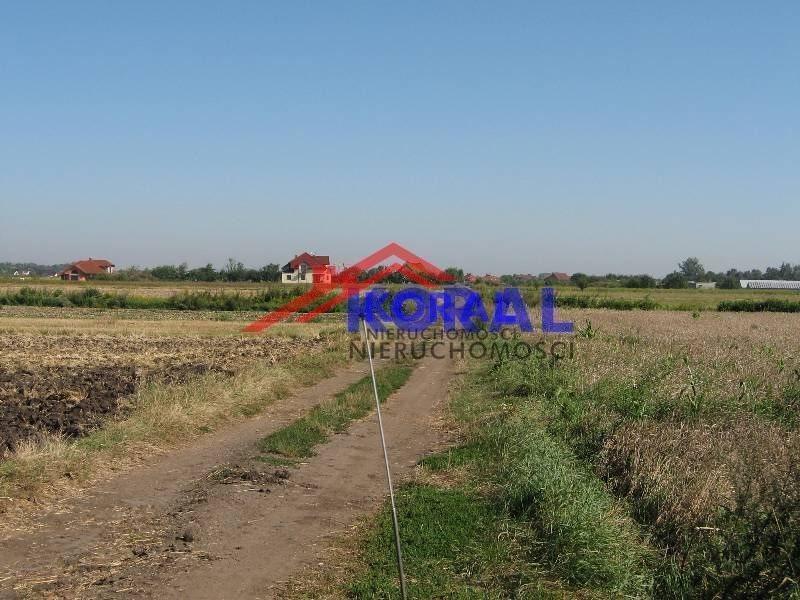 Działka rolna na sprzedaż Żerniki Wrocławskie, Dębowa  3366m2 Foto 3