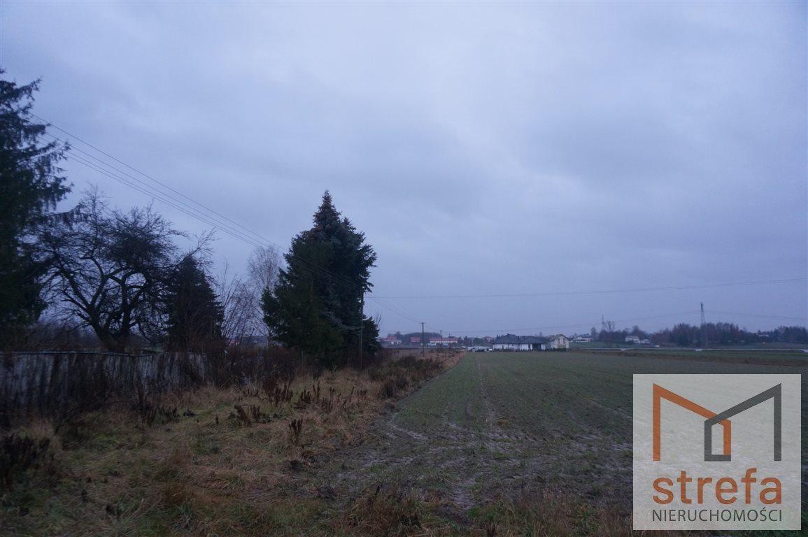 Działka siedliskowa na sprzedaż Majdan Krasieniński  3000m2 Foto 3
