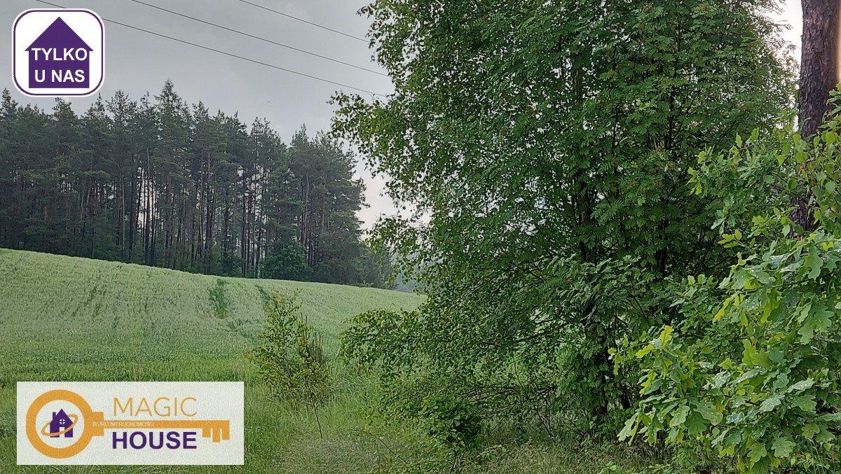Działka leśna na sprzedaż Gołubie  18900m2 Foto 4