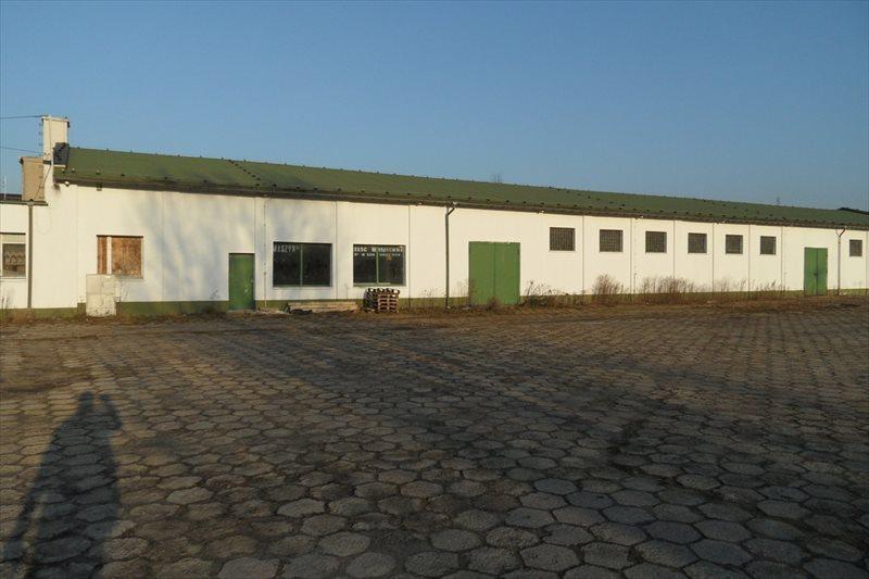 Działka przemysłowo-handlowa na sprzedaż Śrem, Podwale  5691m2 Foto 1