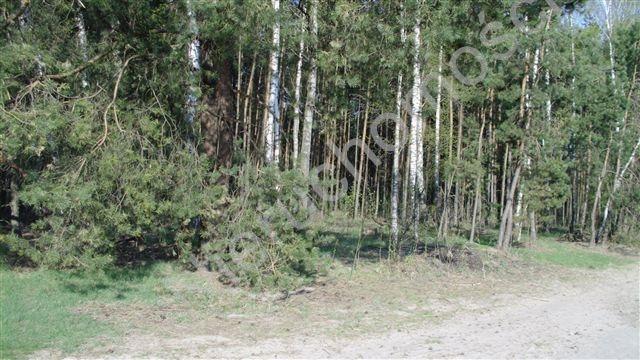 Działka rolna na sprzedaż Badów Górny  1670m2 Foto 1