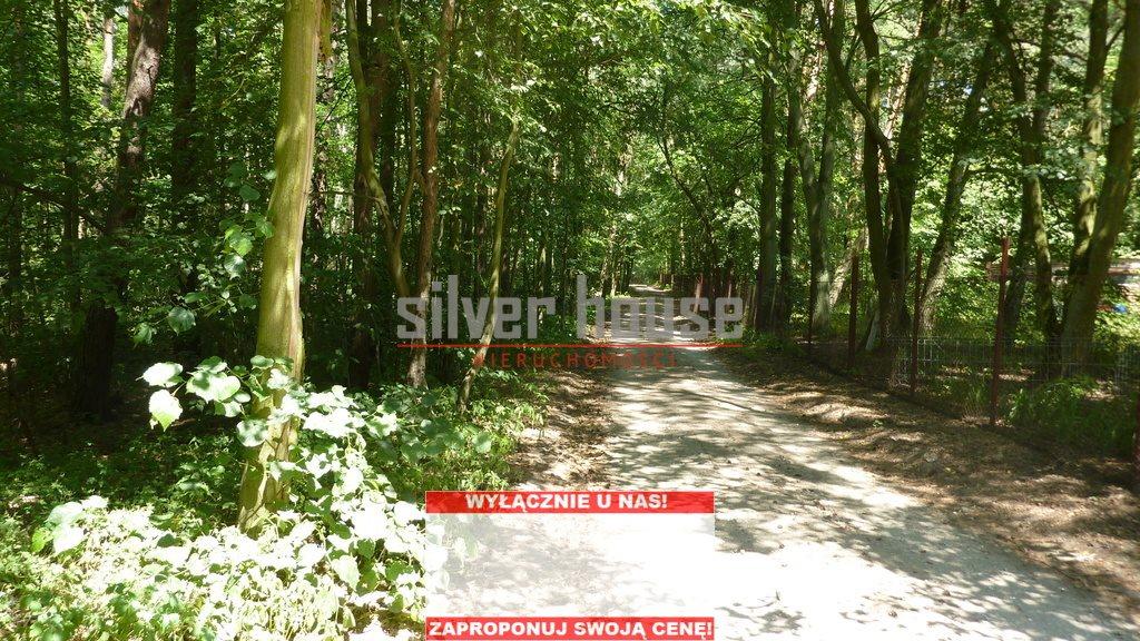Działka leśna z prawem budowy na sprzedaż Siestrzeń  4000m2 Foto 1