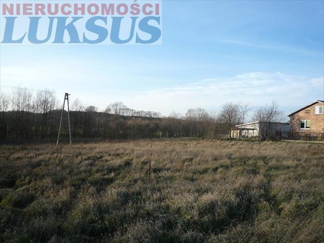 Działka rolna na sprzedaż Prażmów, Prazmów  10270m2 Foto 3