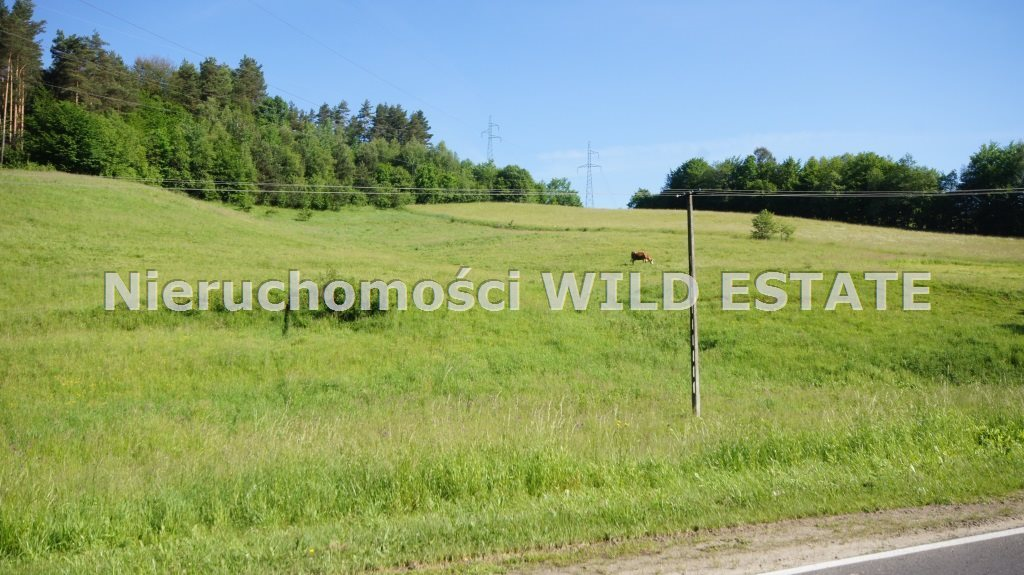 Działka budowlana na sprzedaż Solina, Bóbrka  12387m2 Foto 4