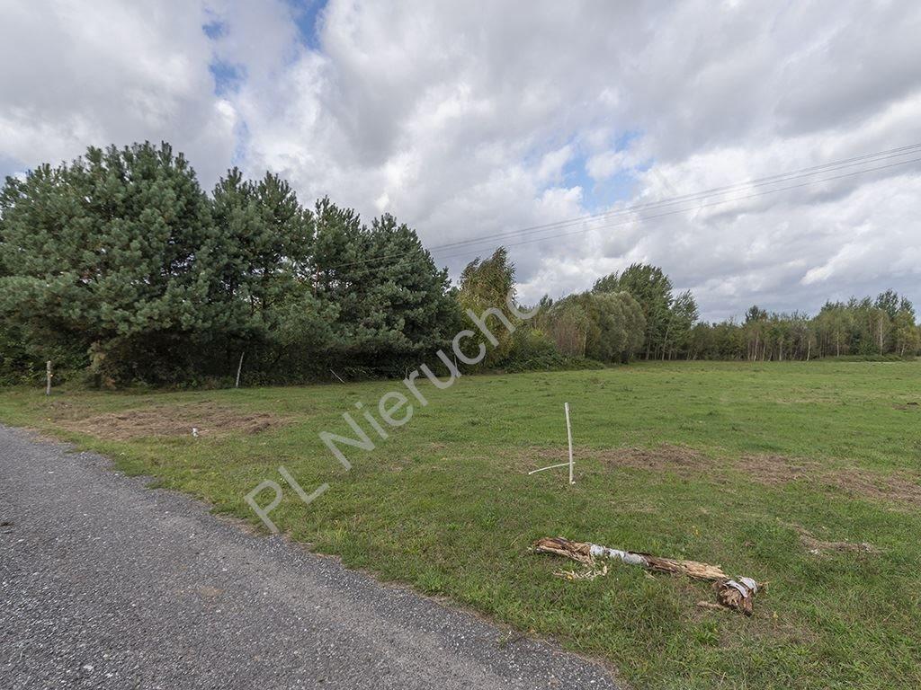 Działka rolna na sprzedaż Budy Michałowskie  24400m2 Foto 1