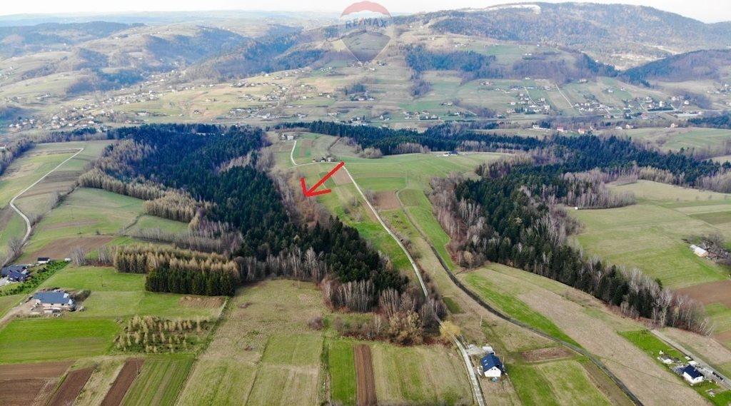 Działka rolna na sprzedaż Mystków  4000m2 Foto 4