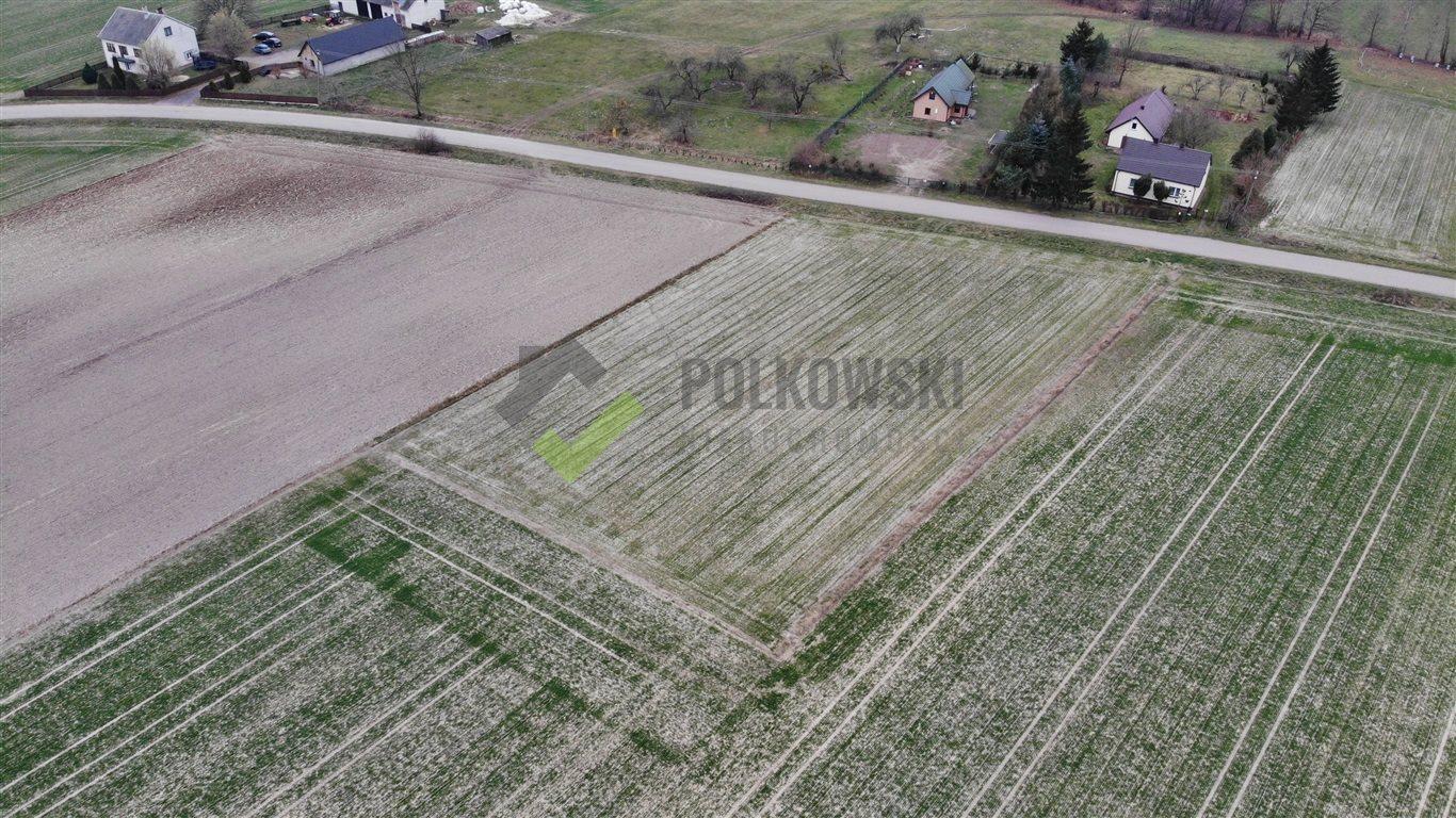 Działka rolna na sprzedaż Strzeszewo  3000m2 Foto 2
