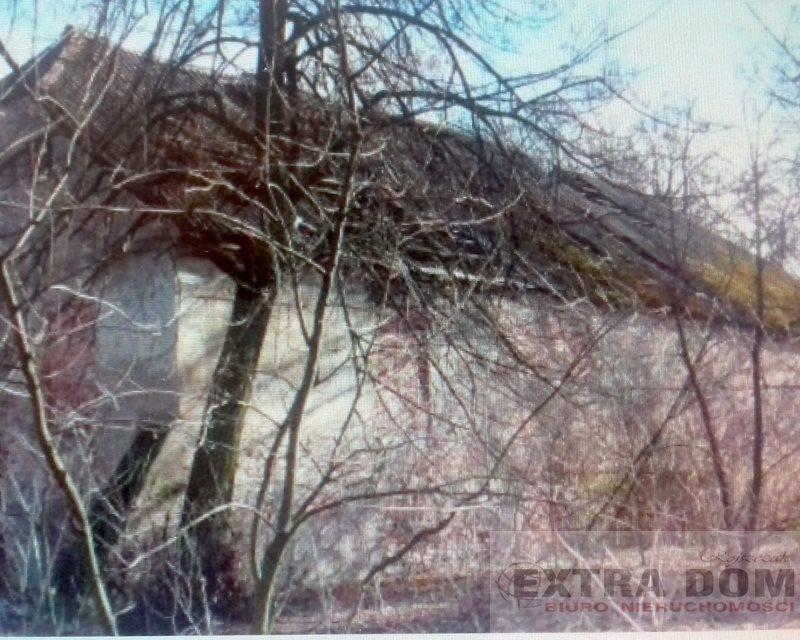 Lokal użytkowy na sprzedaż Dobrzyń Nad Wisłą  760m2 Foto 7