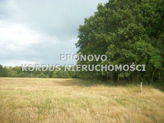 Działka budowlana na sprzedaż Smogolice  1000m2 Foto 2