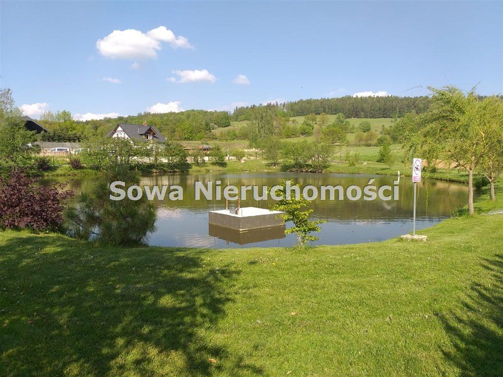 Działka inna na sprzedaż Sosnówka  6000m2 Foto 6