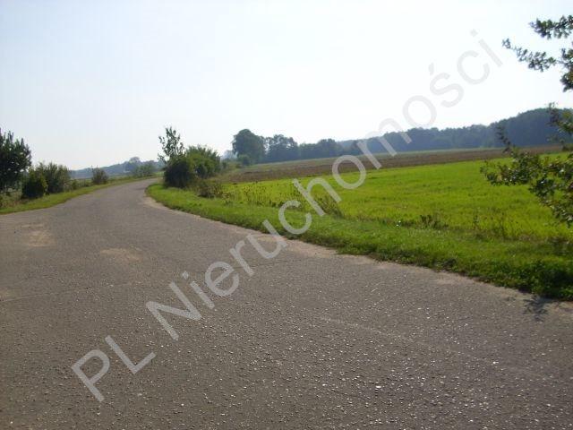 Działka rolna na sprzedaż Mszczonów  18500m2 Foto 4