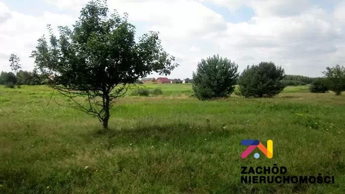Działka rolna na sprzedaż Wygon  3000m2 Foto 1