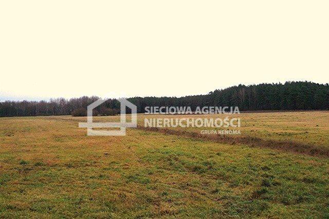 Działka leśna na sprzedaż Strzeczona  206330m2 Foto 10