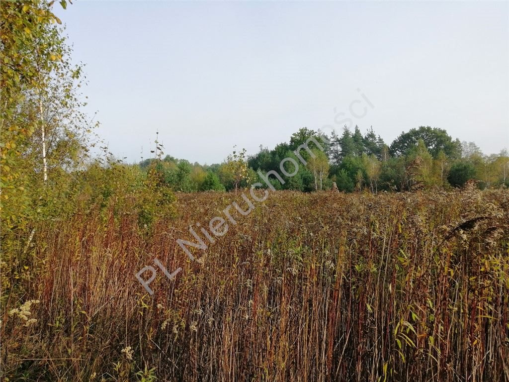 Działka rolna na sprzedaż Rakówiec  3894m2 Foto 3