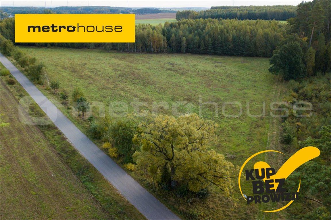 Działka budowlana na sprzedaż Gródki, Płośnica  10416m2 Foto 1