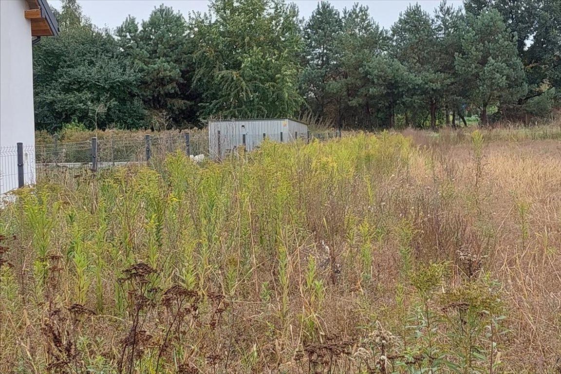 Działka rolna na sprzedaż Toporzysko, Zławieś Wielka  960m2 Foto 4