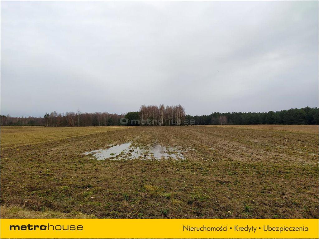 Działka rolna na sprzedaż Chrząstawa, Widawa  23994m2 Foto 3