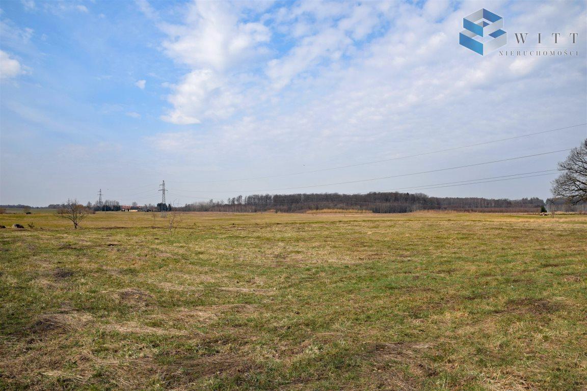 Działka rolna na sprzedaż Morąg, Kudypy  5200m2 Foto 5