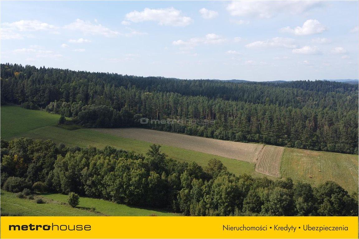 Działka rolna na sprzedaż Weremień, Lesko  9200m2 Foto 10