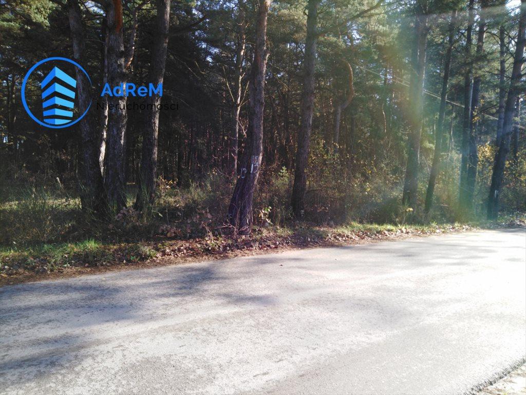 Działka leśna na sprzedaż Jeziórko, Świerkowa  5000m2 Foto 2