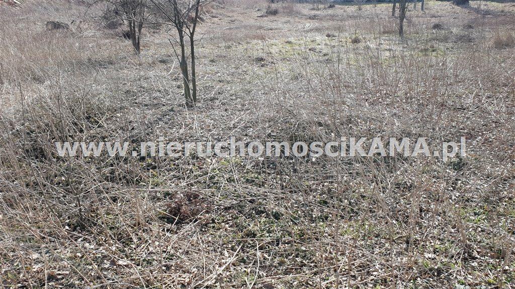 Działka przemysłowo-handlowa na sprzedaż Strumień  6000m2 Foto 2