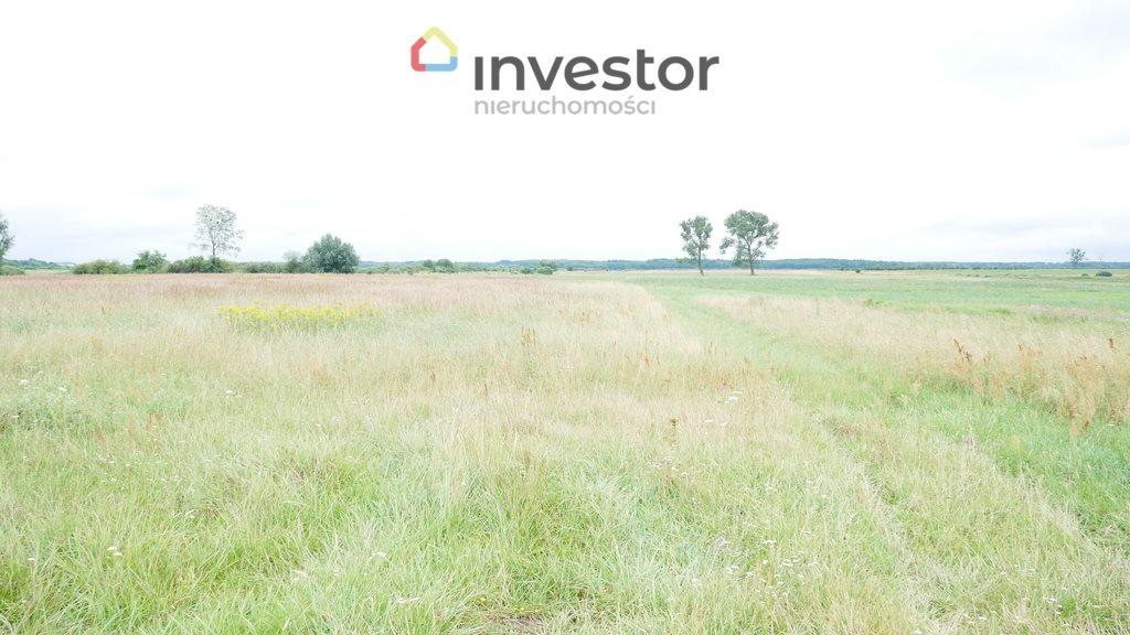 Działka inwestycyjna na sprzedaż Nowe Chojno  10811m2 Foto 2