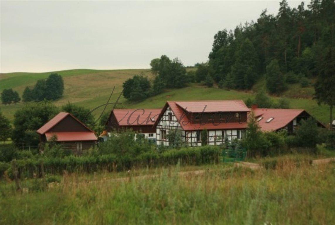 Działka rolna na sprzedaż Rychnowska Wola  22900m2 Foto 3