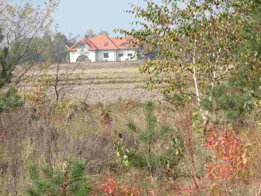 Działka budowlana na sprzedaż Jachranka  6000m2 Foto 3