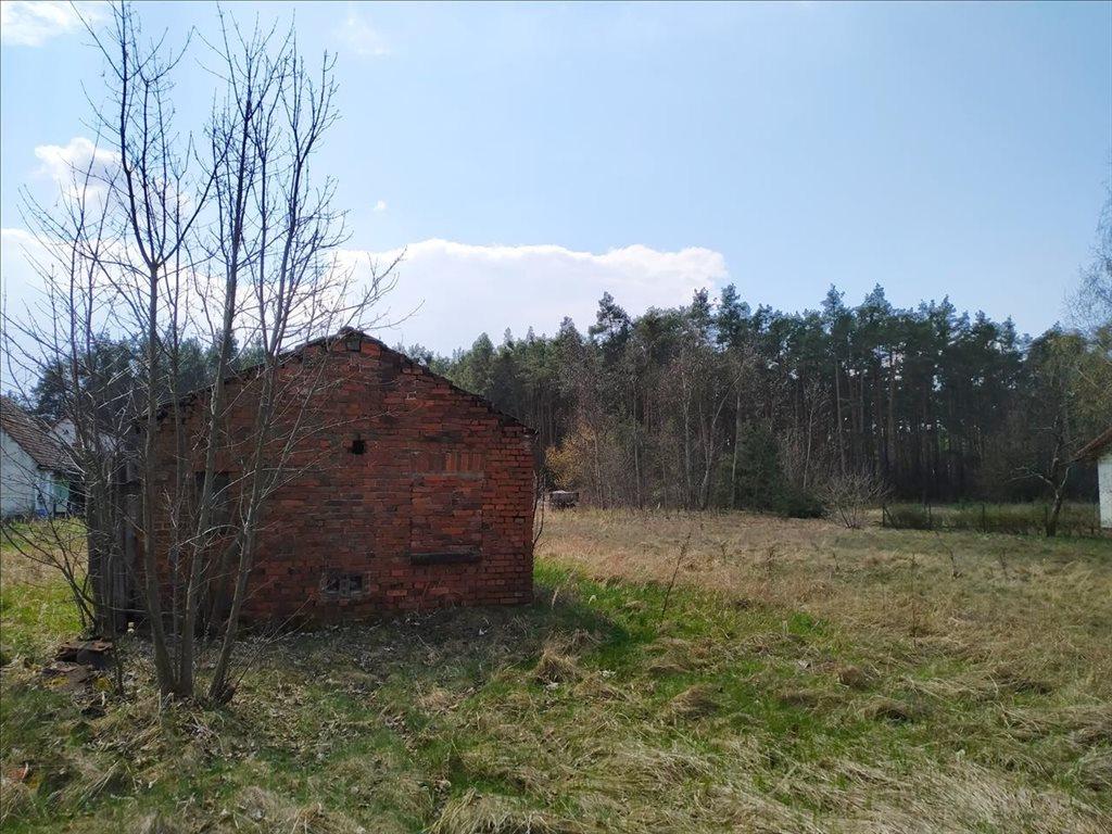 Działka budowlana na sprzedaż Czeszów, Zawonia  3168m2 Foto 1