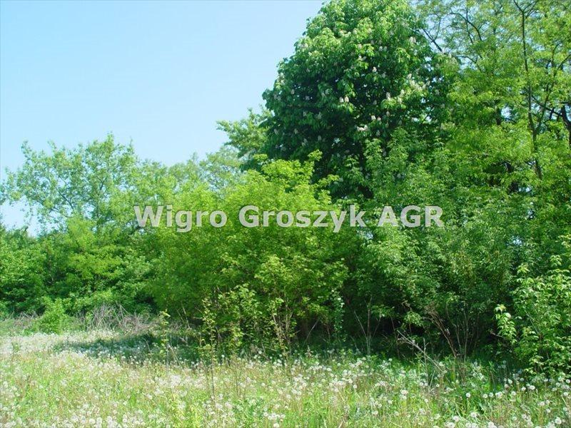 Działka budowlana na sprzedaż Nowy Dziekanów  5352m2 Foto 1