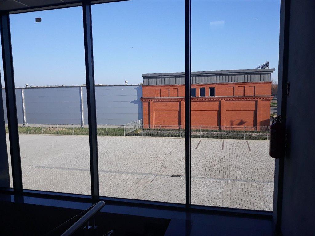 Lokal użytkowy na wynajem Dębica  2200m2 Foto 10