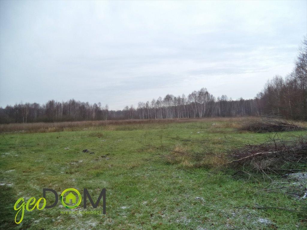 Działka rolna na sprzedaż Terespol  21544m2 Foto 4