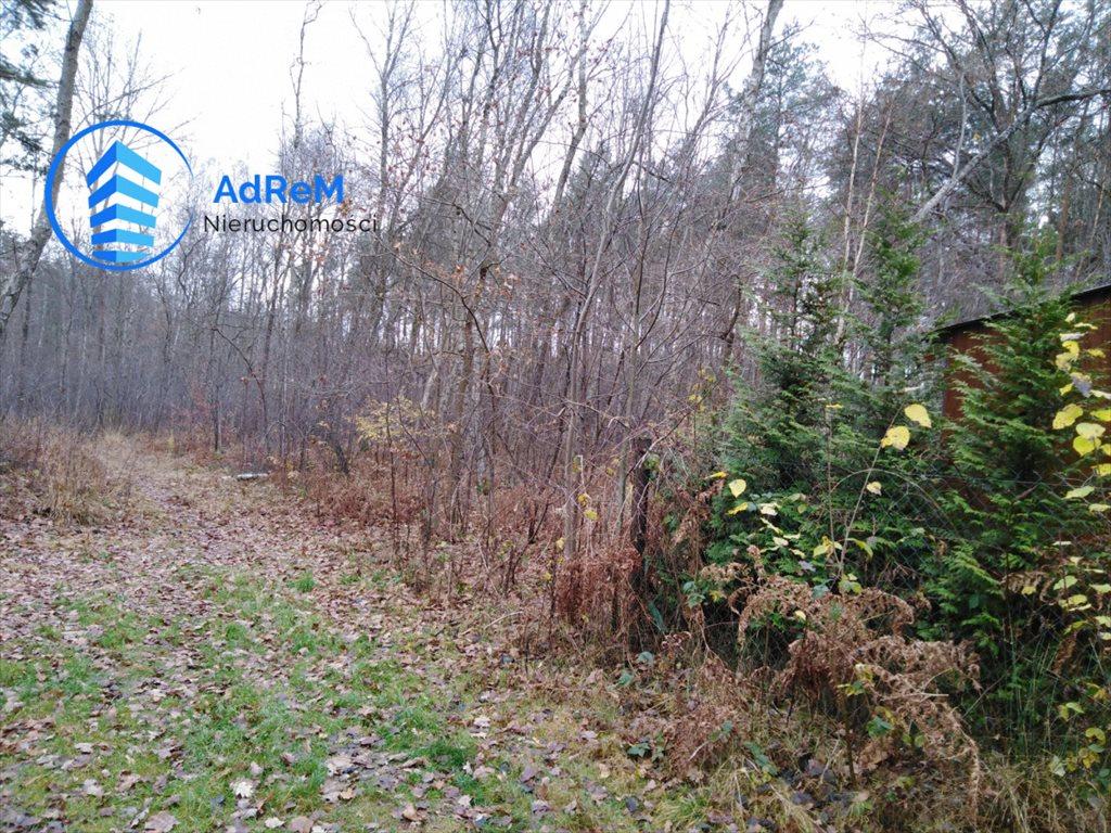 Działka leśna na sprzedaż Nowy Prażmów, Leśna  1521m2 Foto 3