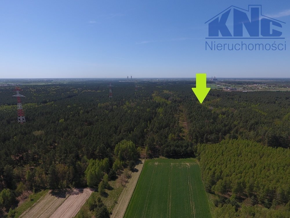 Działka leśna na sprzedaż Laskowiec  5400m2 Foto 1