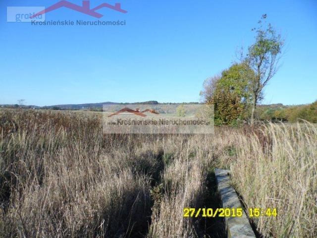 Działka budowlana na sprzedaż Korczyna  4500m2 Foto 4