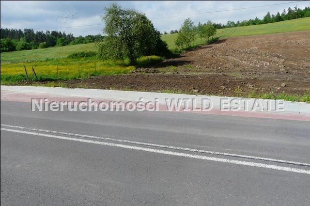 Działka budowlana na sprzedaż Ustrzyki dolne, Jureczkowa  17555m2 Foto 3