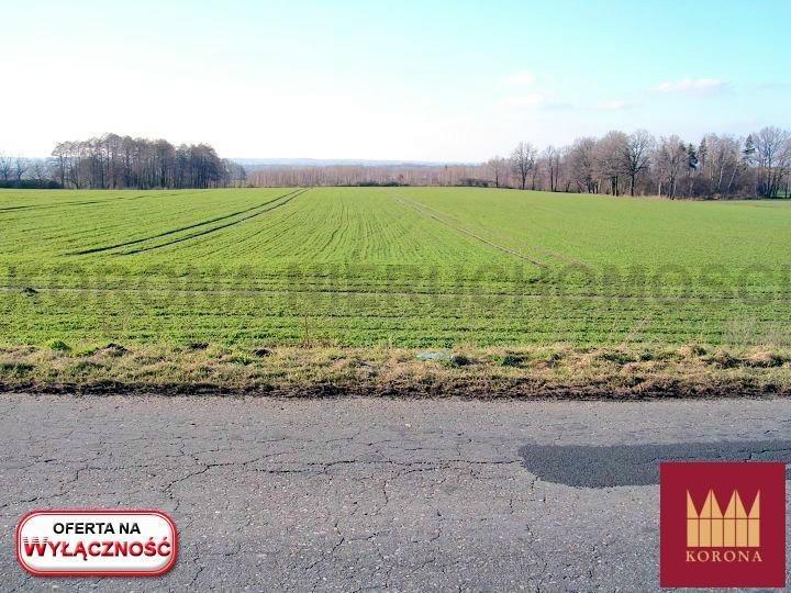 Działka rolna na sprzedaż Adamowice  51000m2 Foto 5