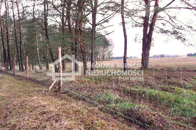 Działka leśna na sprzedaż Strzeczona  129577m2 Foto 11